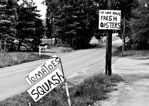 signs in black and white