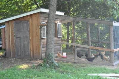 Our little summer project: The chicken coop is finally finished!