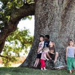 Remarkable Trees of Virginia: Oak Ridge Estate White Oak