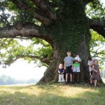 Remarkable Trees of Virginia: The Earlysville Oak