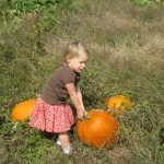 Pumpkin Patch Pictures (a lot of pictures)