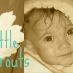 Sponsored Giveaway: Little Sprouts Cloth Diapers!