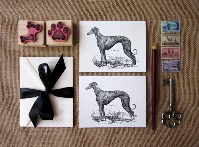 5-greyhounds