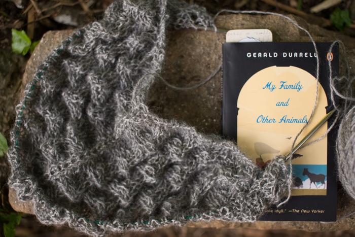 yarn along-0719