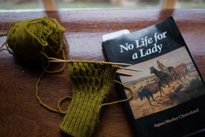 yarn along-0184