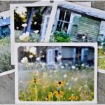 My Photo Notecards