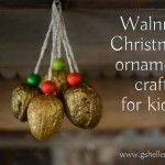 walnuts for Christmas