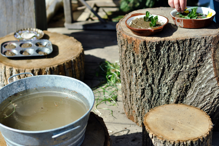 mud pie kitchen tree stumps and water small things blog