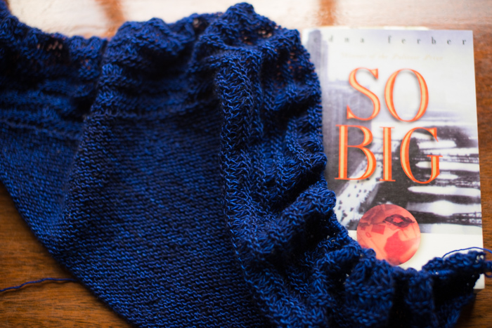 Share your current read and knitting project at the Yarn Along