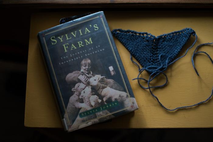 yarn along-3690