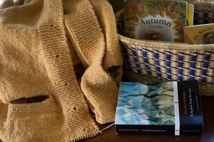yarn along-5045